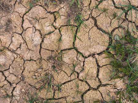 Image of Dry cracked earth background, clay desert texture