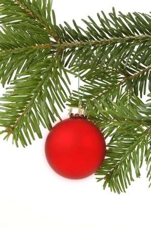 Christmas ball hanging in a christmas tree photo