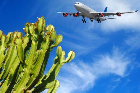 Avión está a punto de aterrizar en un destino tropical. La planta está en blure el avión está en el enfoque.