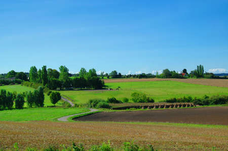 Idyllic farm landscape with blue sky, green fields and trees photo