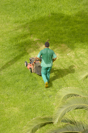 mowing grass: Man is mowing grass on a hot summer day.