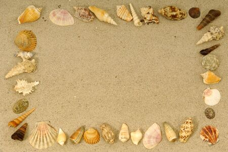 Frame with many different seashells. Place your own object or tekst in the frame. Stock Photo - 2486647
