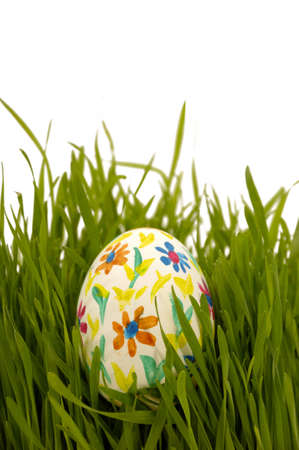 Painted easter egg in green grass on a white background. photo