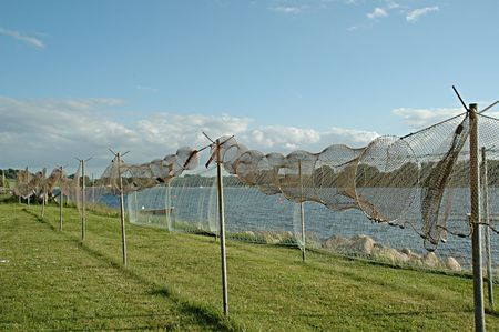 Fishing nets are on land ready for repair. photo