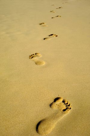 foot prints: Footprints in the sand on a beach