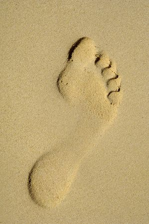 Singel footprint in the sand on a beach photo