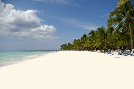 Exotic beach with white sand and palms photo