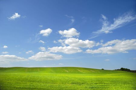 Landscape with green field and blue and cloudy sky.