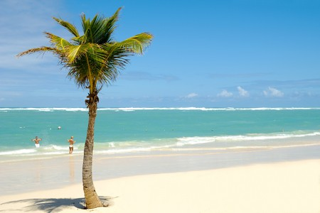 Palm on exotic caribbean beach with the coast in the background. In the water a man and a woman is going to swim. photo