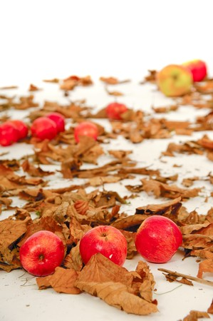 Red apples and old leafs. Studio shot. Stock Photo - 7591209