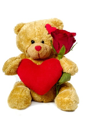 A sweet teddy bear is sitting on a white background holding a red rose flower and a red heart. Stock Photo