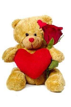 oso de peluche: Un oso de peluche dulce est� sentado sobre un fondo blanco, sosteniendo una flor rosa roja y un coraz�n rojo.