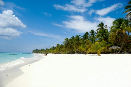 Tropical beach with palm and white sand with the coast in the background photo