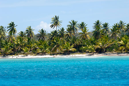 dominican republic: Empty caribbean island with a nice beach and green palms. The picture of the beach is taken from a boat on sea. Stock Photo
