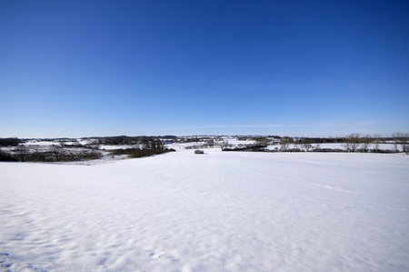 Landscape at winter. The ground is covered with snow. photo