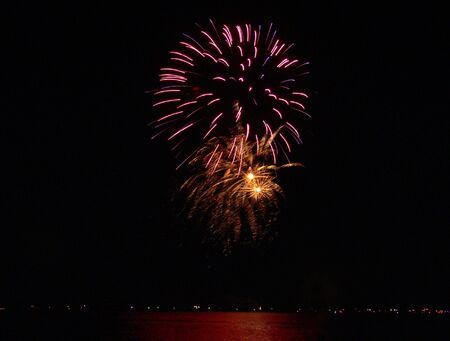 new year's day: A photograph of a fireworks display near a lake.