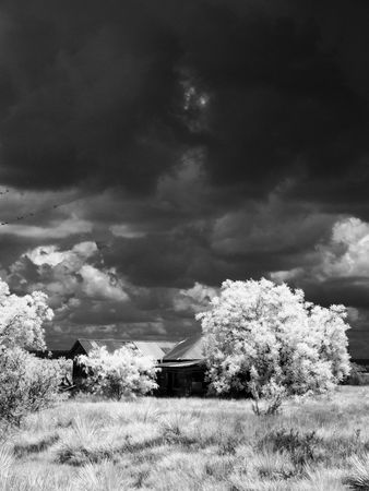 ir: A a black and white infrared photograph of a house and some trees with storm clouds in the background. Stock Photo