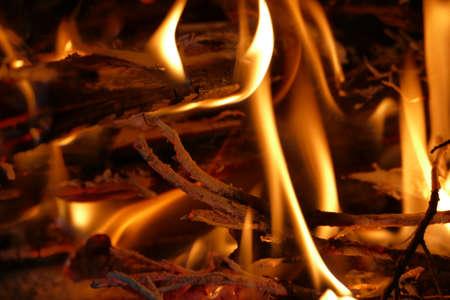 close up: Close up burning firewood