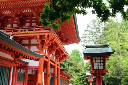 Hikawa at the Shrine of Gate and trees in Omiya Saitama Prefecture