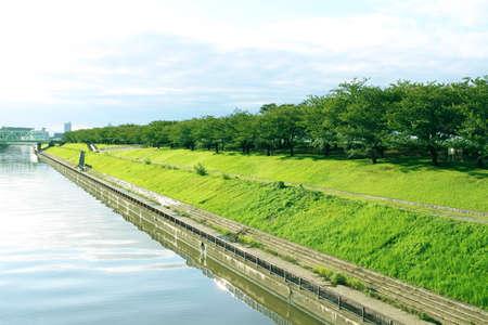 Riverside landscape