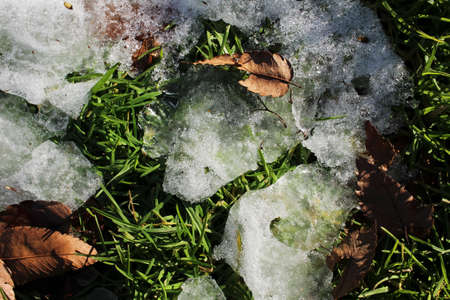 melted: The melted snow