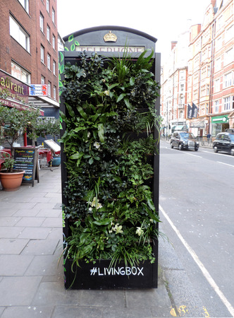 Refurbished iconic London Telephone Booth into a living box, full of thriving green plants.