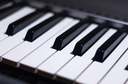 Black and white piano keys. An octave of a keyboard musical instrument. Close up.