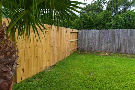 New and Old privacy wooden fences in back yard.