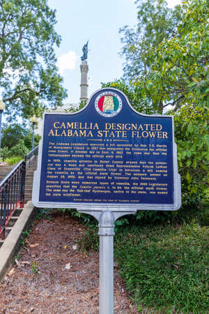 Montgomery, AL / USA - August 27, 2020: Historical Marker for Camellia Designated Alabama's State Flower