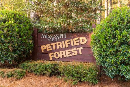 Flora, MS / USA - November 24, 2020: Mississippi Petrified Forest Entrance sign 新聞圖片