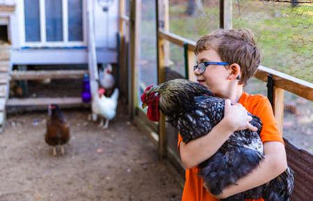 Young boy holding his pet chicken Foto de archivo
