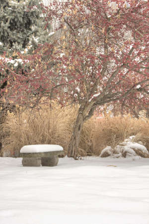 A vertical image of a concrete bench covered with snow.  The bench is off center to the left. photo