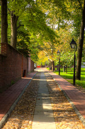 cobblestone road: Trees with green leaves stretch over a single lane of a cobblestone road