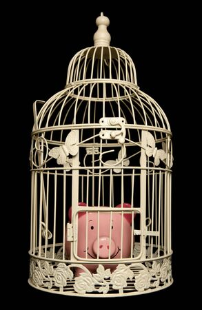 Piggy bank trapped in a bird cage isolated on black background photo