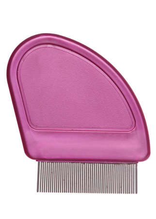 nit: Nit comb isolated studio cutout