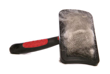 Pet brush with hair studio cutout Stock Photo