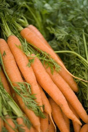 Bunch of carrots on a market stool Stock Photo - 10673408