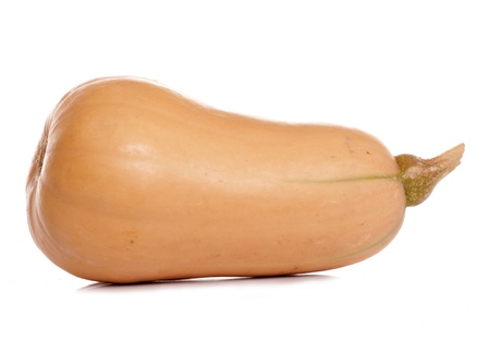 Butternut Squash Isolated on a white background