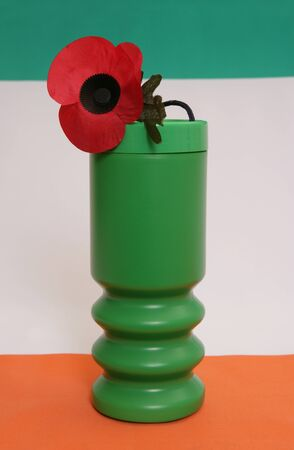 Remembrance day charity donation on irish flag photo