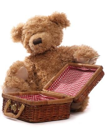 teddy bear: osos de peluche de picnic en el fondo blanco