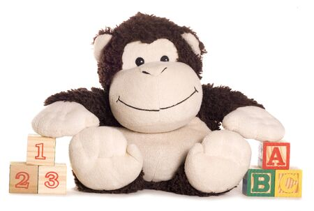 soft toy: soft toy monkey with learning blocks studio cutout