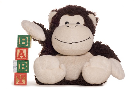 soft toy: New baby alphabet blocks with soft toy studio cutout