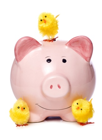 piggy bank money: piggy bank with easter chicks studio cutout Stock Photo