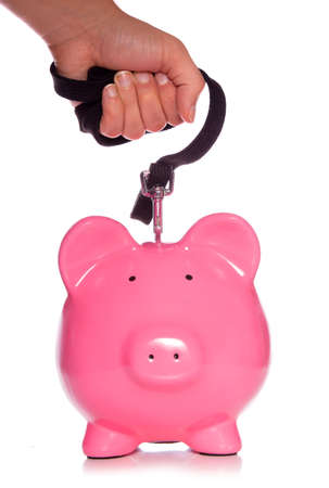 controlling your money piggy bank studio cutout photo