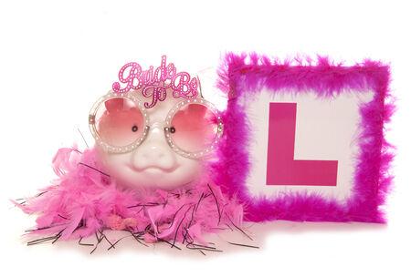 l plate: Piggy bank hen party studio cutout Stock Photo