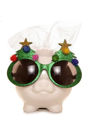 Christmas bride piggy bank cutout photo