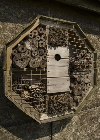 man made: man made insect home on a wall