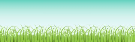Panoramic horizontal seamless grass pattern with blue sky background