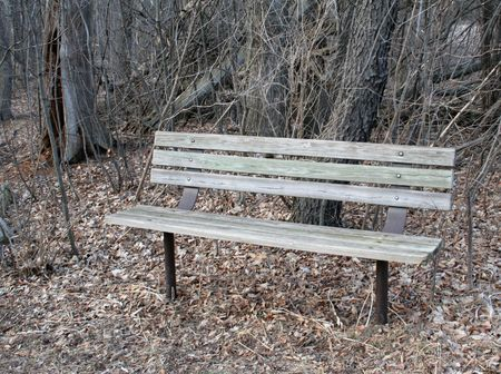 friendless: A lonely park bench set in the early spring.