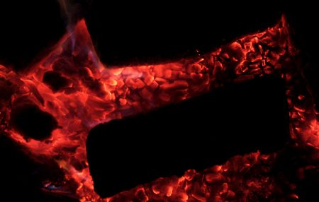 embers: Smoldering embers of dying fire.